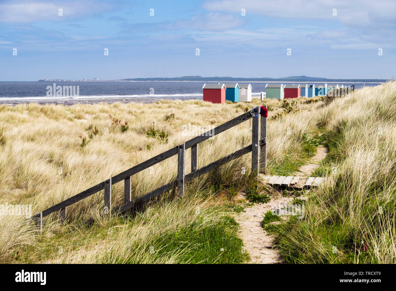 Path through dunes and wooden steps leading to beach with colourful beach huts on Moray Firth coast. Findhorn, Moray, Scotland, UK, Britain - Stock Image