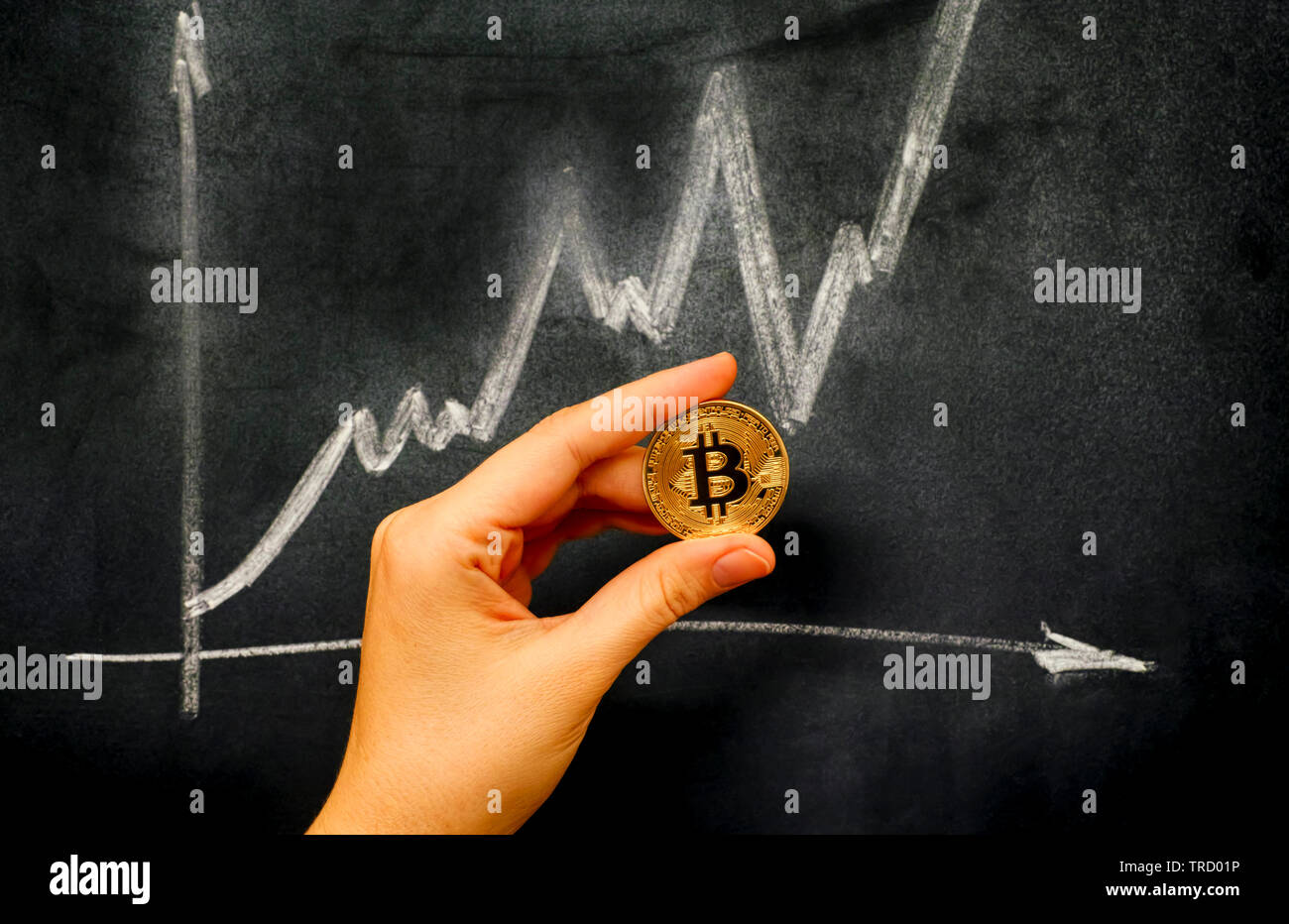 Golden Bitcoin virtual coin in human hand against blackboard with chalk drawing graph. Close-up. - Stock Image