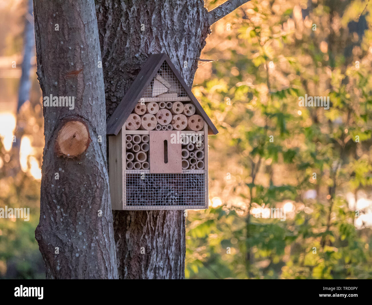 Garden Life Insect Hotel Wooden Bug House Natural Nest Shelter Box