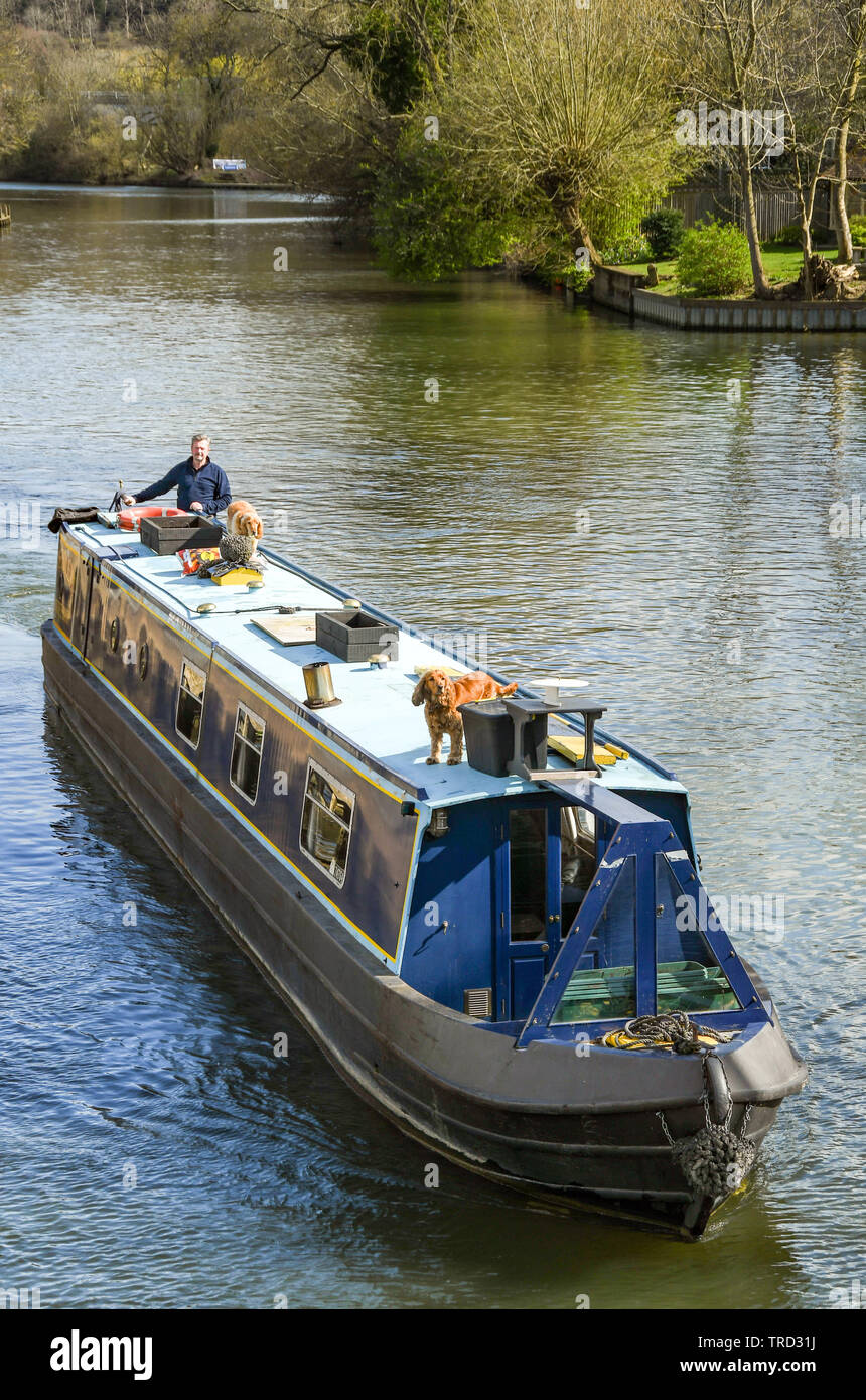 MARLOW, ENGLAND - MARCH 2019: Narrow boat on the River Thames in Marlow Stock Photo