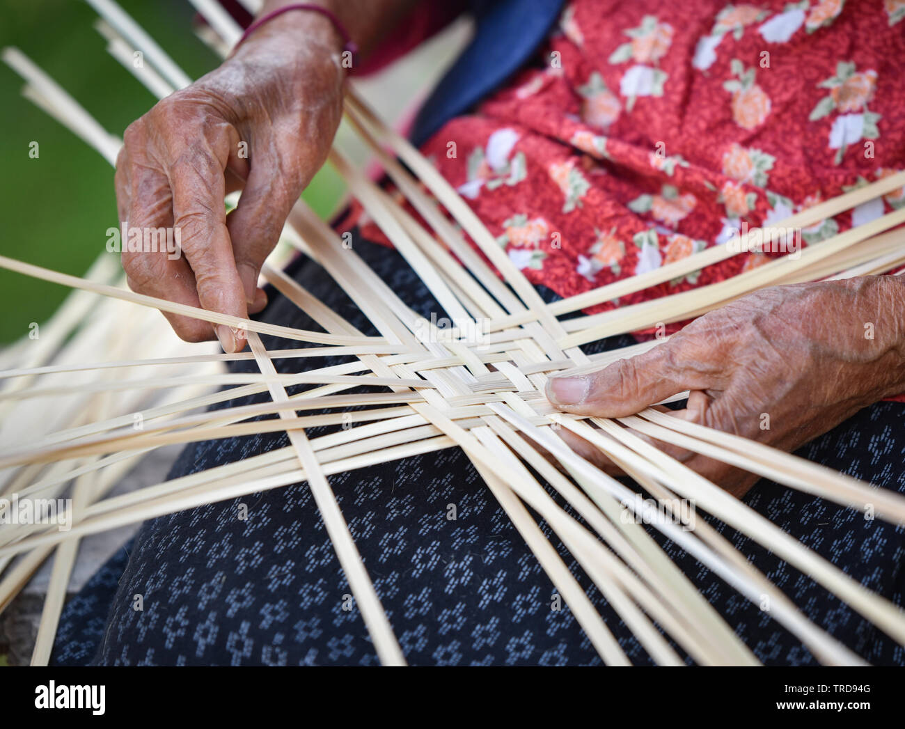 Old senior woman hand working crafts weaving bamboo making basket for nature product in Thailand Asia - Stock Image