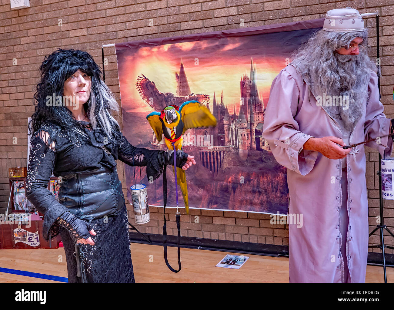 Great Yarmouth Comicon 2019 – A lady in fancy dress holding a parrot and posing for a photo at the Comicon event held in the seaside town of Great Yar - Stock Image