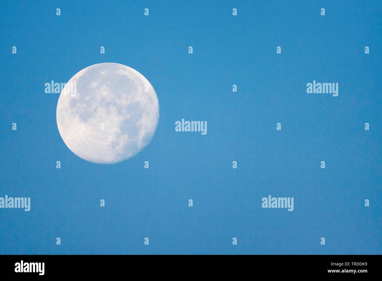 Mond am blauen Himmel, Niederlande, Suedholland, Katwijk aan Zee | moon in clear bly sky at daylight, Netherlands, South Holland, Katwijk aan Zee | BL - Stock Image