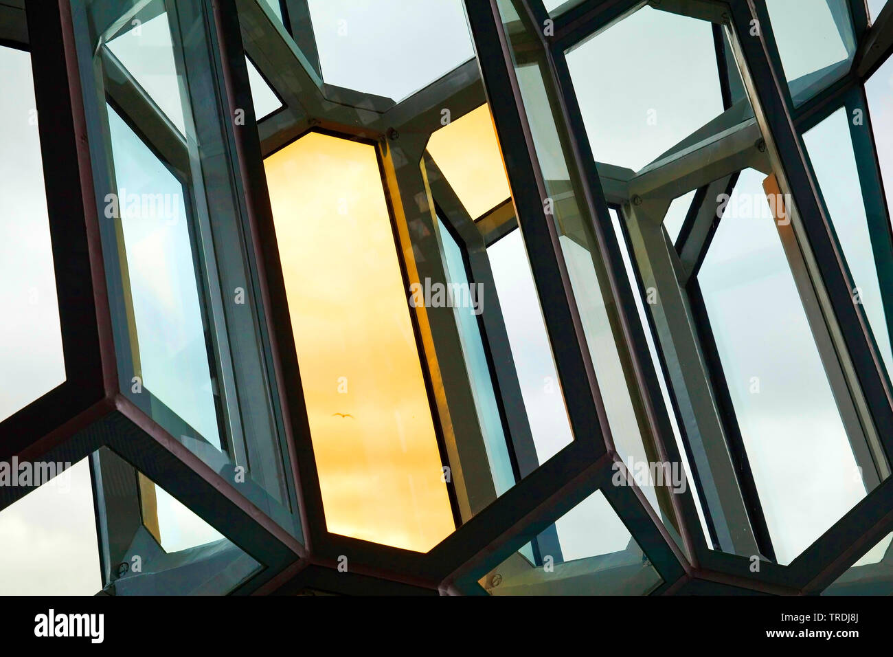 Fassadendetail der wabenartigen Struktur aus dichromatischen Glas, Konzerthaus Harpa, Island, Reykjavik | distinctive colored glass facade of Harpa co - Stock Image
