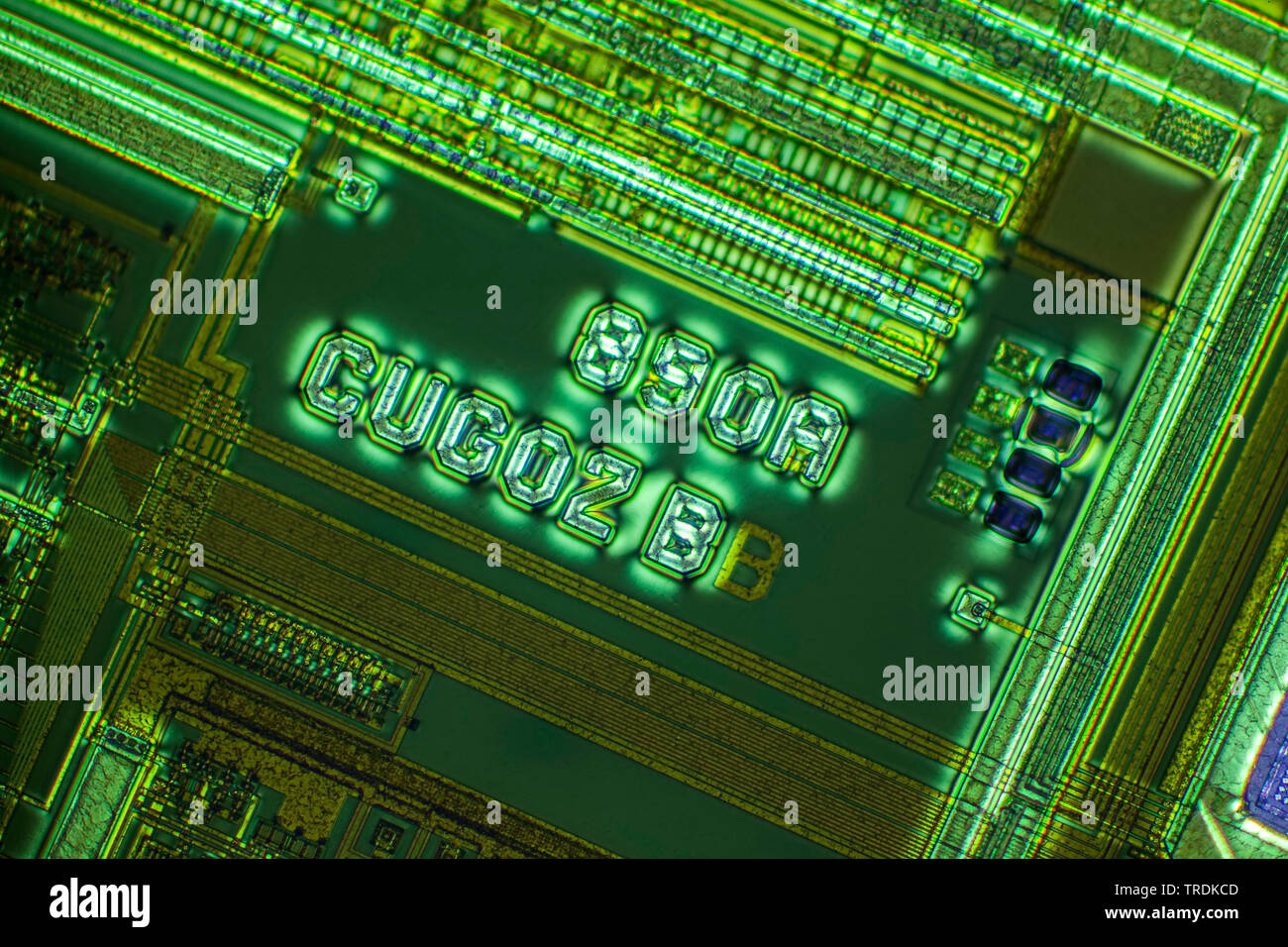 Semiconductor Wafer Stock Photos & Semiconductor Wafer Stock