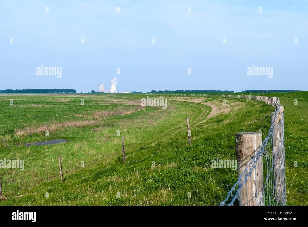 Landschaft von Saeftinghe, Atimkraftwerk im Hintergrund, The Netherlands; Nederland, Zeeland, Verdronken Land van Saeftinghe | Landscape at Drowned La - Stock Image
