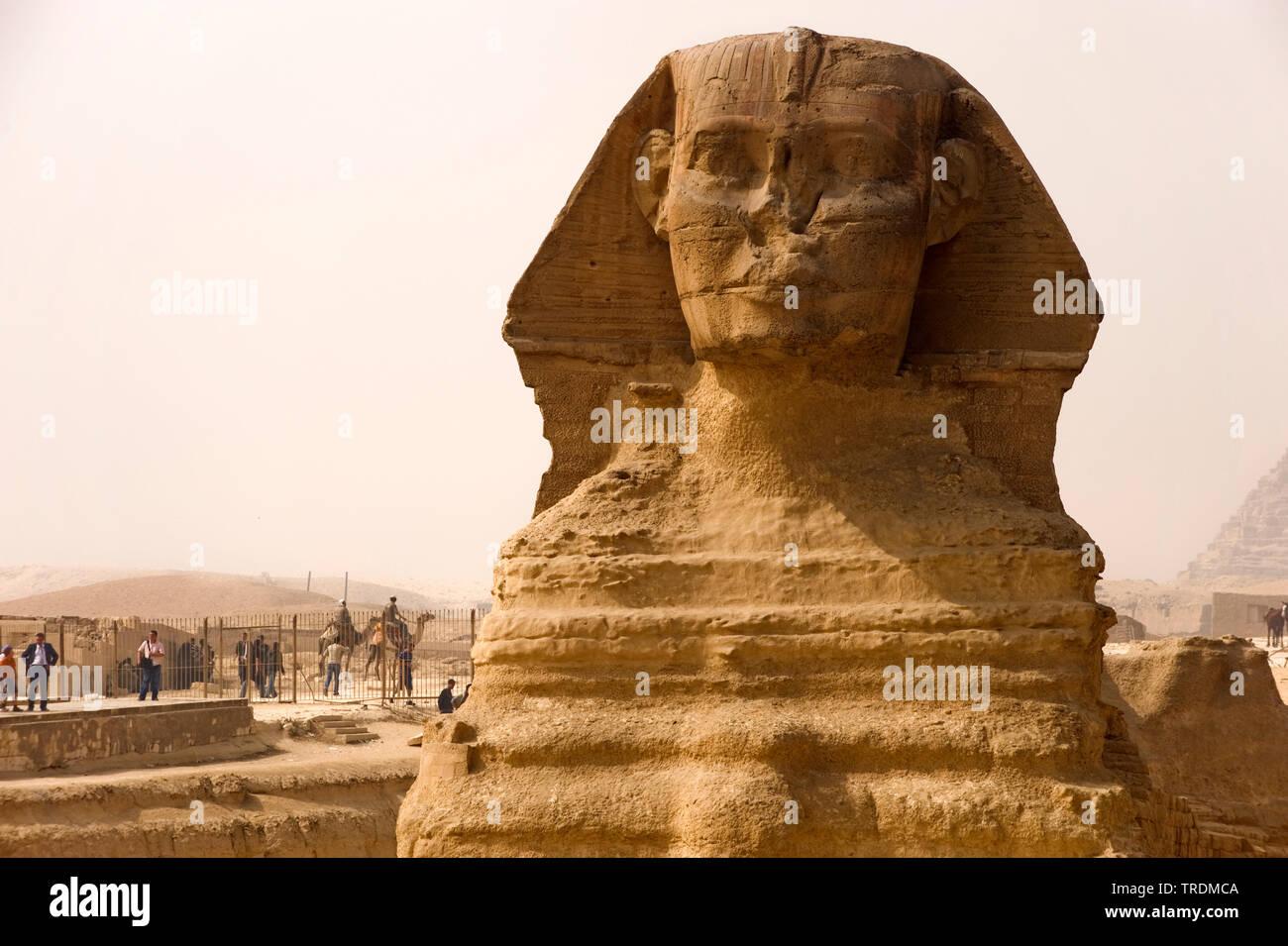 Sphinx of Gizeh, Aegypten, Gizeh | sphinx of Gizeh, Egypt, Gizeh | BLWS506439.jpg [ (c) blickwinkel/McPHOTO/M. Begsteiger Tel. +49 (0)2302-2793220, E- - Stock Image