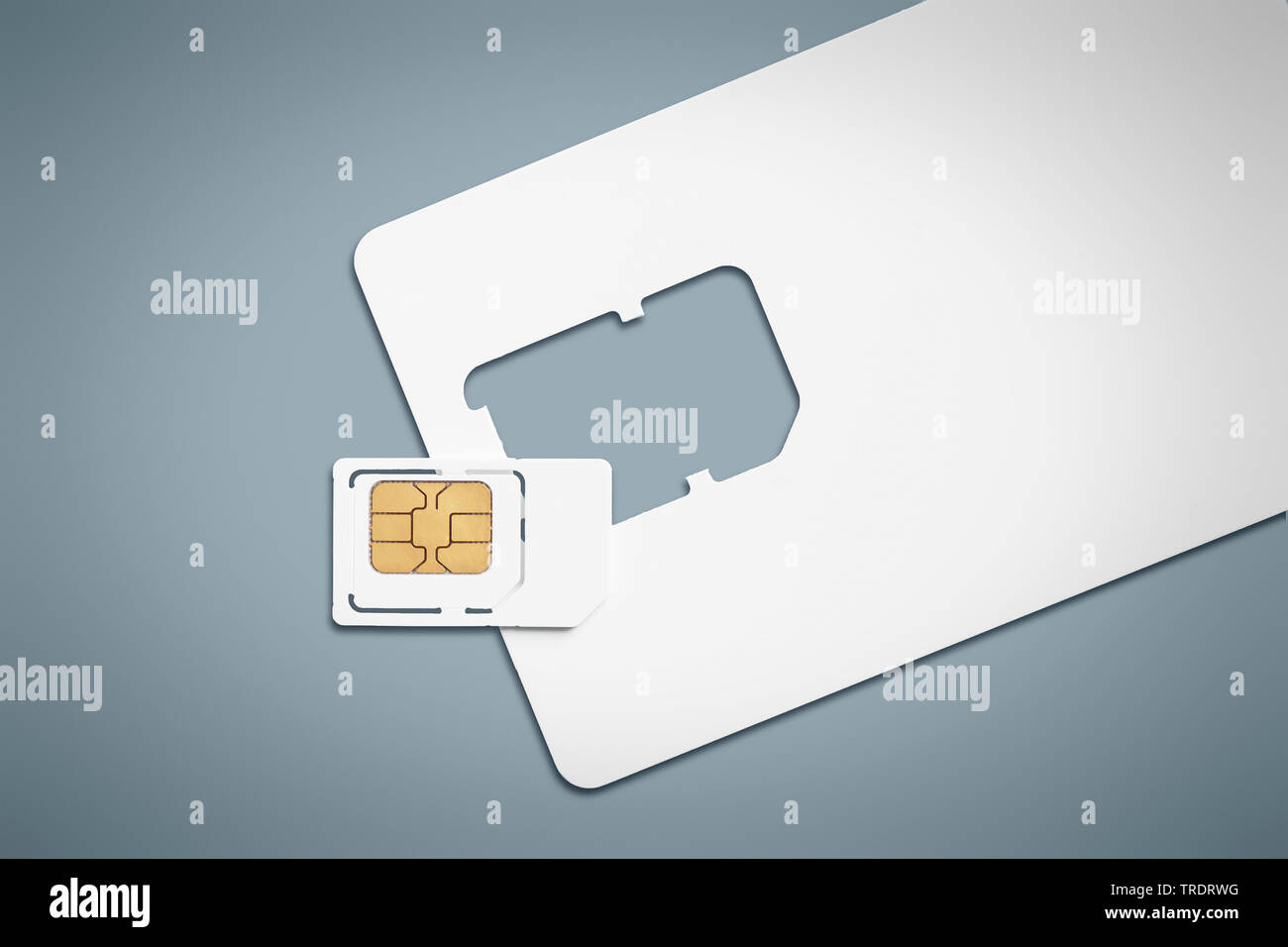 handelsuebliche SIM-Karte | customary smart card for cell phones | BLWS509710.jpg [ (c) blickwinkel/McPHOTO/M. Gann Tel. +49 (0)2302-2793220, E-mail: - Stock Image
