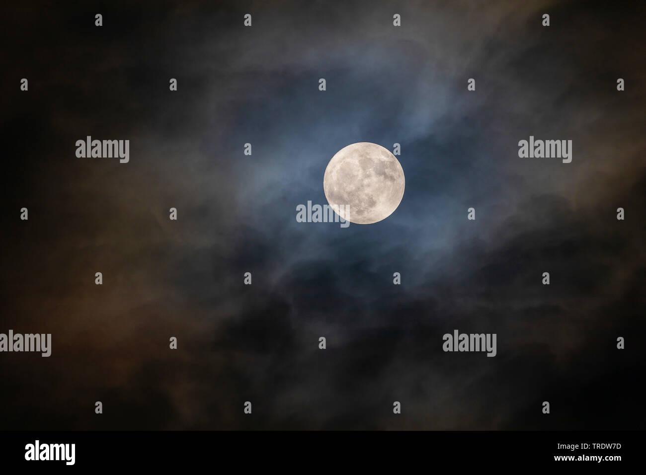 Vollmond mit Hof scheint durch die Wolken, Deutschland, Bayern | full moon with halo shining through the clouds, Germany, Bavaria | BLWS510741.jpg [ ( - Stock Image