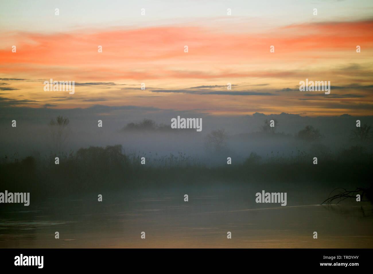 mist damps over floodplains of the Amper in evening light, Germany, Bavaria Stock Photo