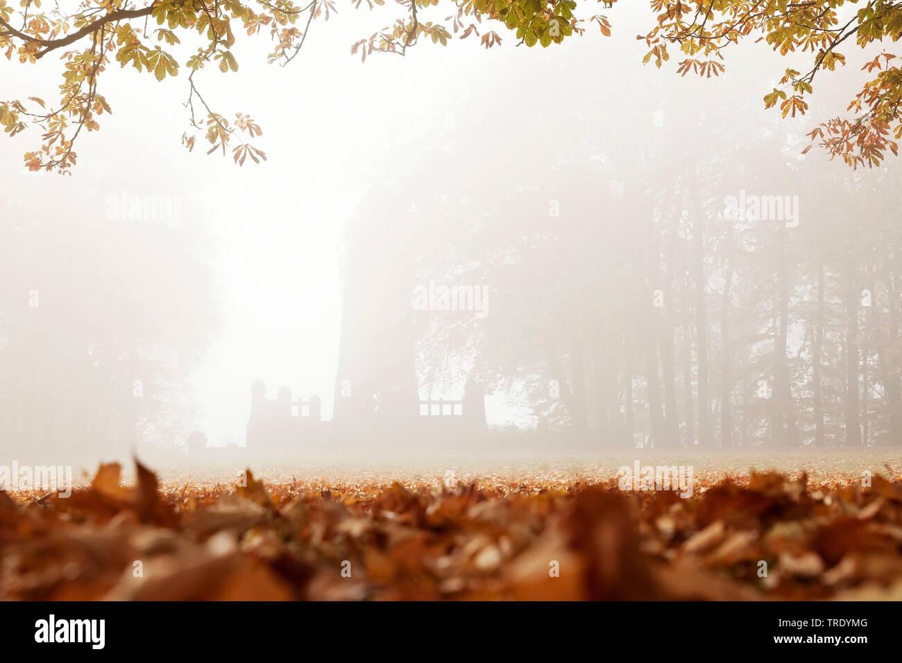 Berger-Denkmal am Hohenstein im Herbstnebel, Deutschland, Nordrhein-Westfalen, Ruhrgebiet, Witten | Berger monument at the Hohenstein in autumn fog, G - Stock Image