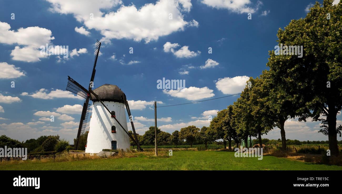 Stammesmuehle in Nettetal-Hinsebeck, Deutschland, Nordrhein-Westfalen, Nettetal   mill Stammen in Nettetal-Hinsebeck, Germany, North Rhine-Westphalia, - Stock Image