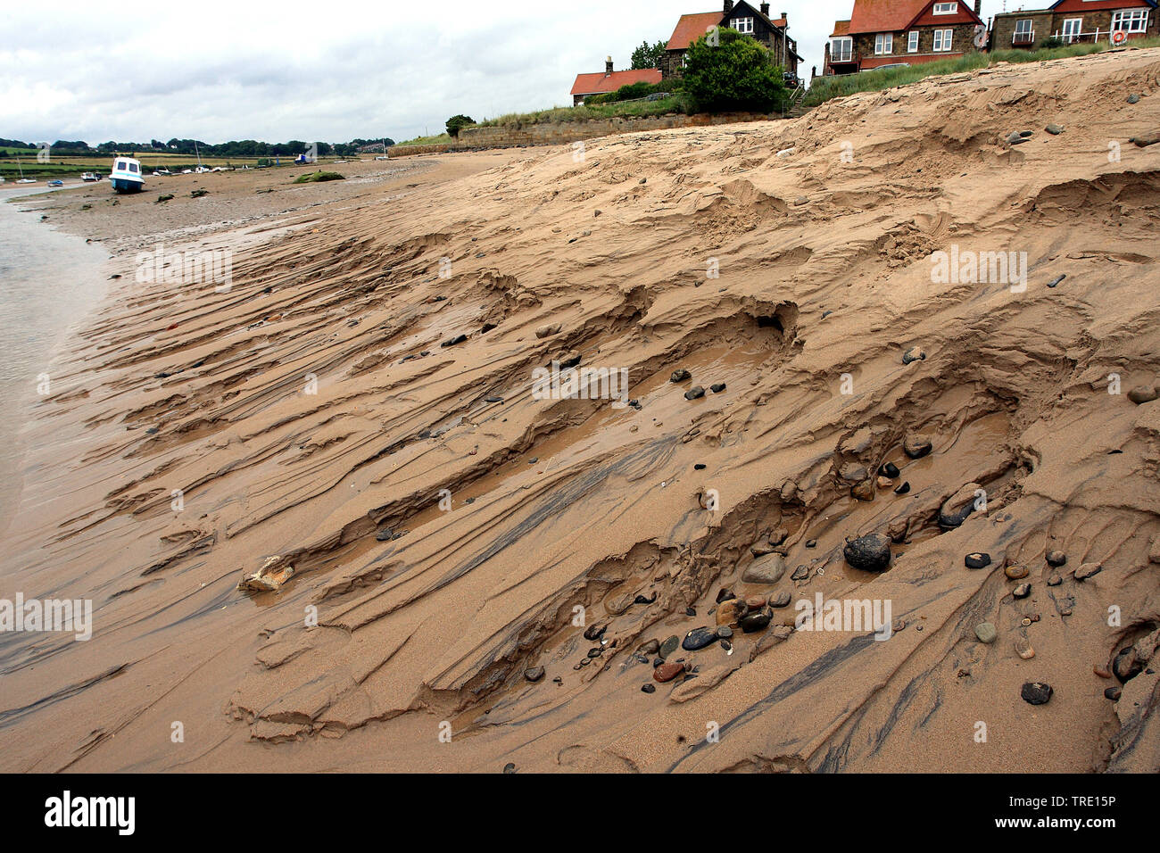 Duenen in Alnmouth, Grossbritannien, England, Northumberland   dunes in Alnmouth, United Kingdom, England, Northumberland   BLWS514225.jpg [ (c) blick - Stock Image