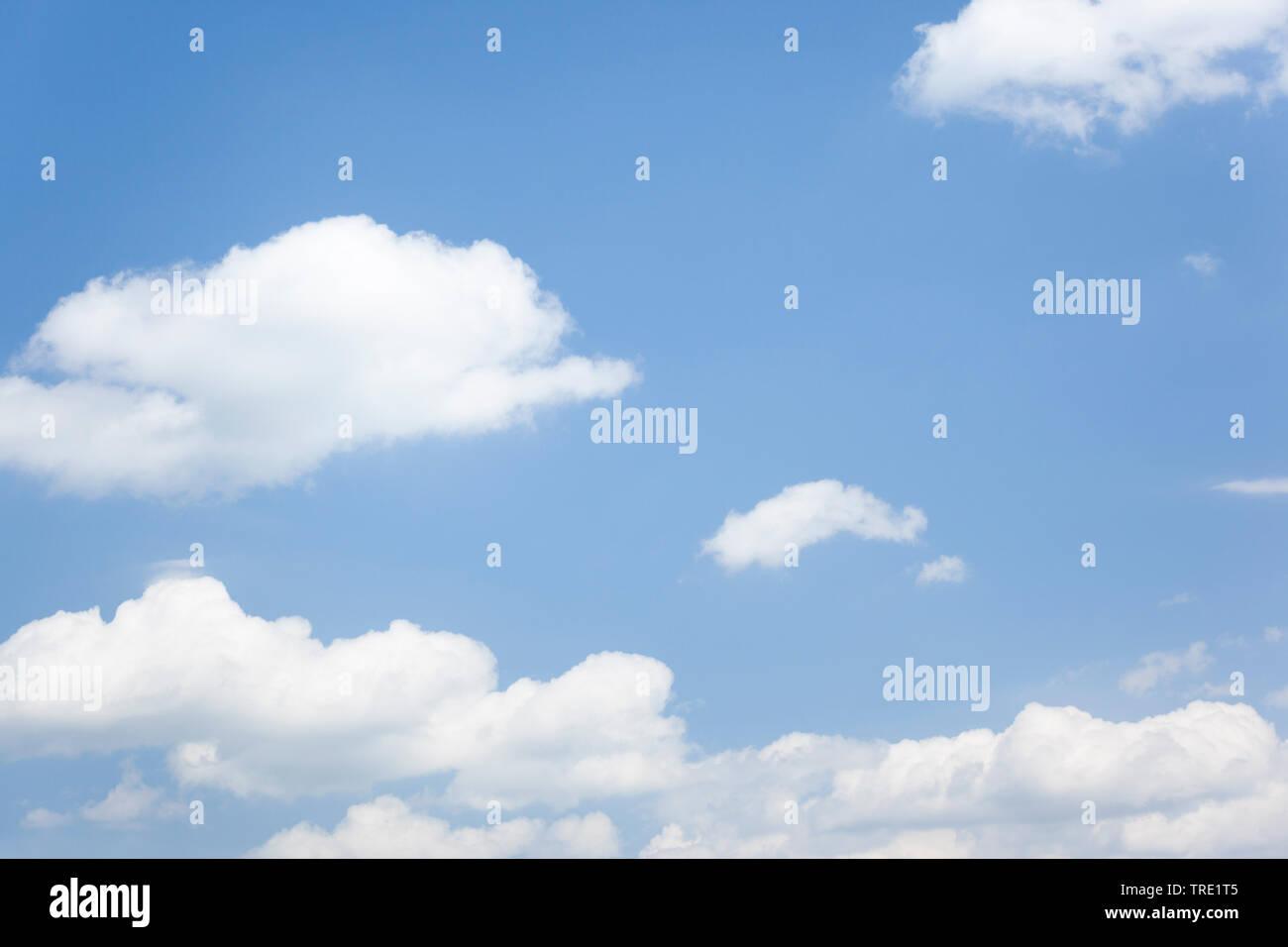 blauer Himmel mit weissen Wolken im Sonnenschein   blue sky with white clouds in sunlight   BLWS514891.jpg [ (c) blickwinkel/McPHOTO/M. Gann Tel. +49 - Stock Image