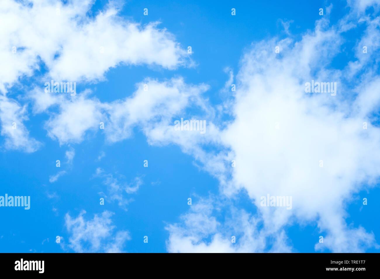 blauer Himmel mit weissen Wolken im Sonnenschein   blue sky with white clouds in sunlight   BLWS514892.jpg [ (c) blickwinkel/McPHOTO/M. Gann Tel. +49 - Stock Image