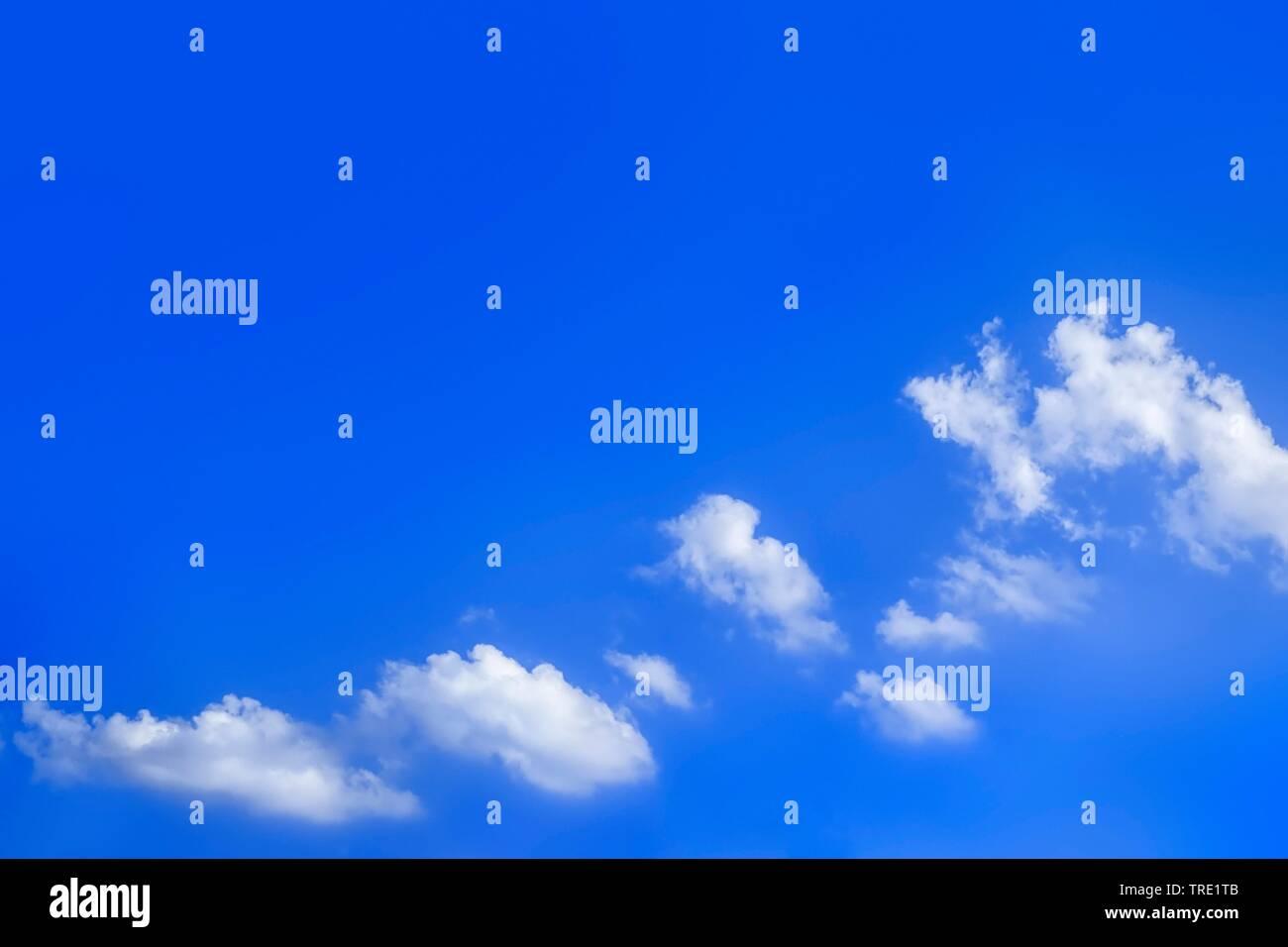 blauer Himmel mit weissen Wolken im Sonnenschein   blue sky with white clouds in sunlight   BLWS514894.jpg [ (c) blickwinkel/McPHOTO/M. Gann Tel. +49 - Stock Image