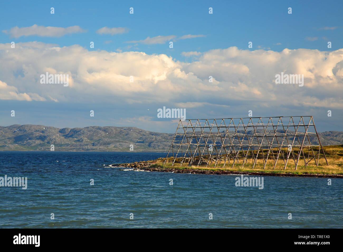 Stockfischtrocknungsgestell, Norwegen, Varangerfjord, Nesseby | frames for dried cod, Norway, Varangerfjord, Nesseby | BLWS514942.jpg [ (c) blickwinke - Stock Image