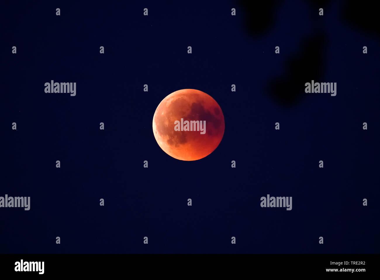 Totale Mondfinsternis am 27.07.2018 in Hamburg, Blutmond, Deutschland, Hamburg | moon eclipse in Hamburg at 27.07.2018, Germany, Hamburg | BLWS515665. - Stock Image