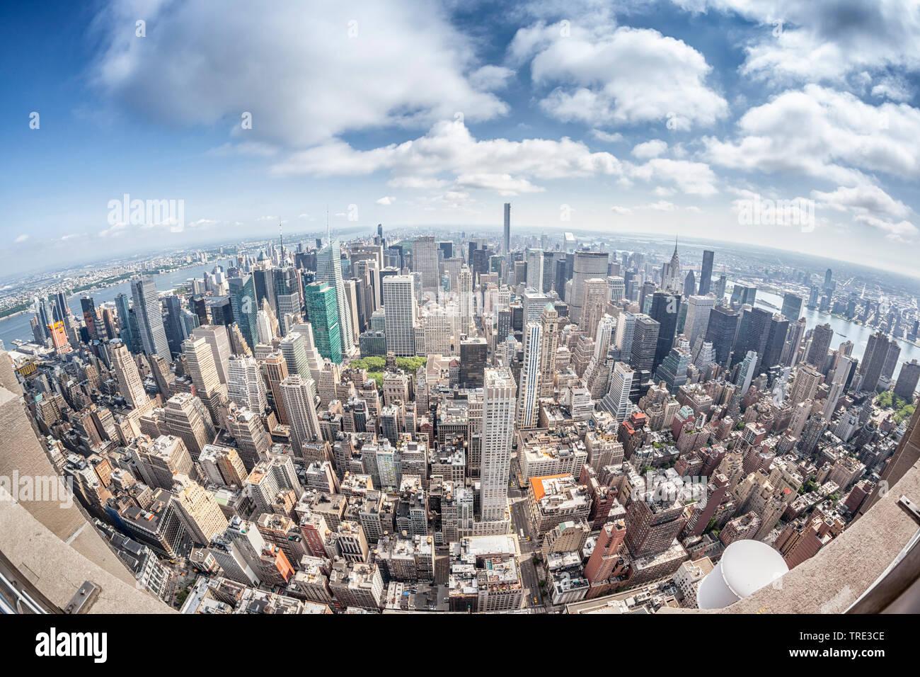 Wolkenkratzer New Yorks, fotografiert mit Fischaugen-Objektiv, USA, New York City   skyscaper of New York, siheye view, USA, New York City   BLWS51624 - Stock Image