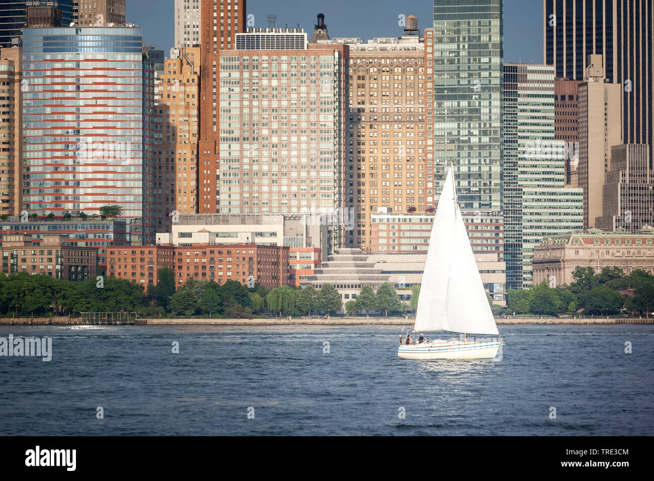 Segelboot vor New York, USA, USA, New York (Bundesstaat) | sailing boat in front of New York, USA, USA, New York (state) | BLWS516250.jpg [ (c) blickw Stock Photo
