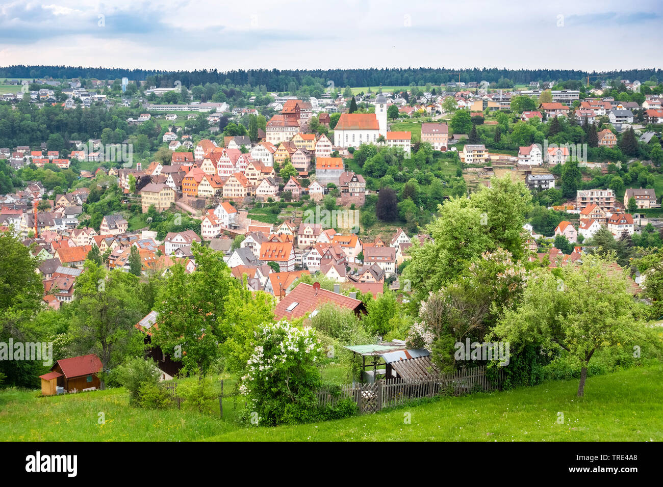 View of the histrorical town of Altensteig in the Black Forrest, Germany, Germany, Baden-Wuerttemberg, Black Forest, Altensteig Stock Photo