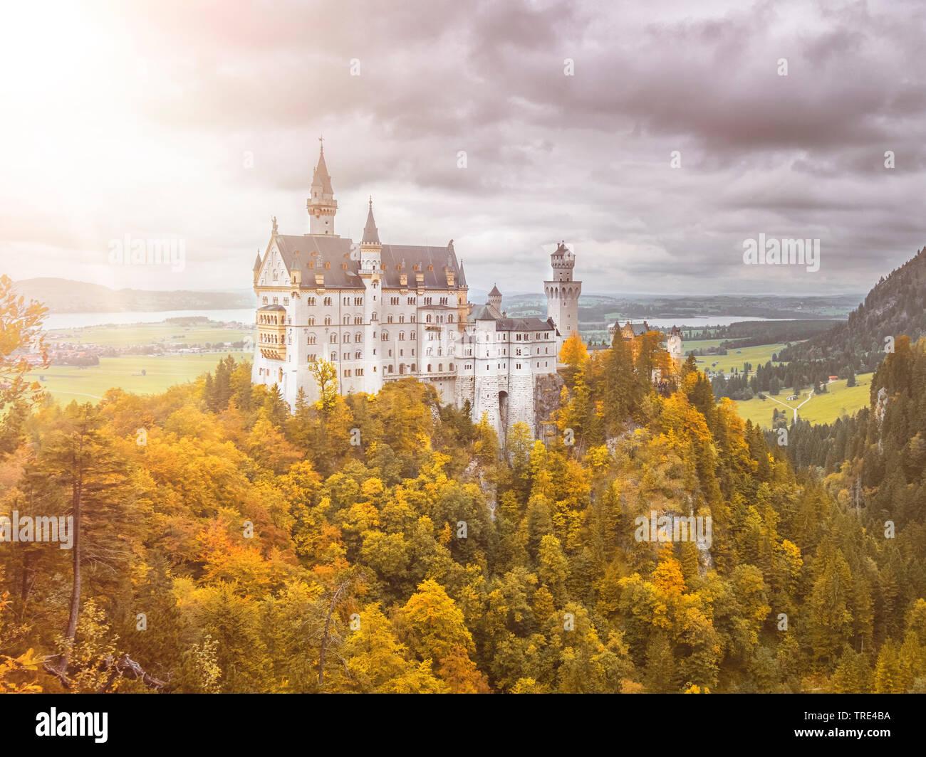 Herbstansicht des Schlosses Neuschwanstein, Deutschland, Bayern | View of caste Neuschwanstein in Bavaria, Germany in autumn, Germany, Bavaria | BLWS5 - Stock Image