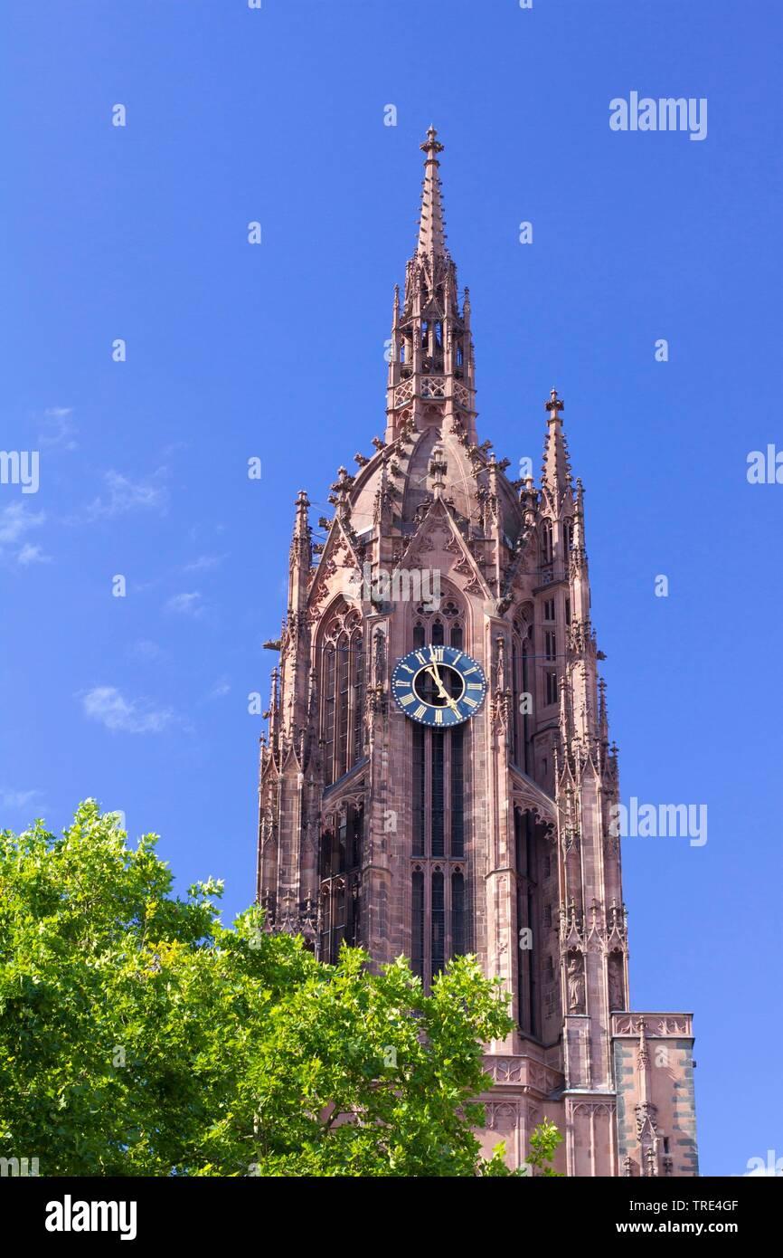 Kaiserdom St. Bartholomaeus, Deutschland, Hessen, Frankfurt am Main | cathedral St Bartholomaeus, Germany, Hesse, Frankfurt am Main | BLWS517095.jpg [ - Stock Image