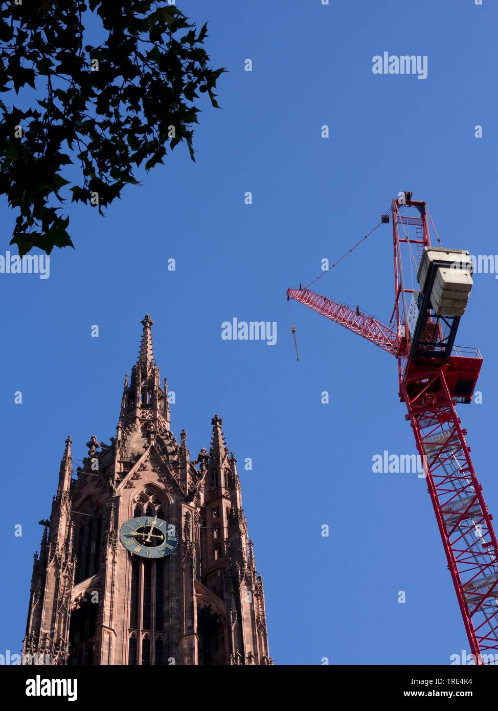 Frankfuter Dom mit Baumkran, Deutschland, Hessen, Frankfurt am Main | Frankfurt Cathedral with tower crane, Germany, Hesse, Frankfurt am Main | BLWS51 - Stock Image