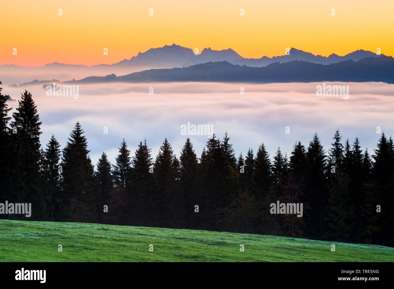 Aussicht auf Saentis vom Ratenpass, Schweiz | View onto the Saentis from Ratenpass, Switzerland | BLWS517954.jpg [ (c) blickwinkel/P. Frischknecht Tel - Stock Image