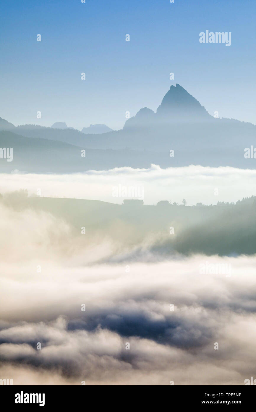 Aussicht auf Mythen vom Ratenpass, Schweiz | View onto the Mythen from Ratenpass, Switzerland | BLWS517958.jpg [ (c) blickwinkel/P. Frischknecht Tel. - Stock Image