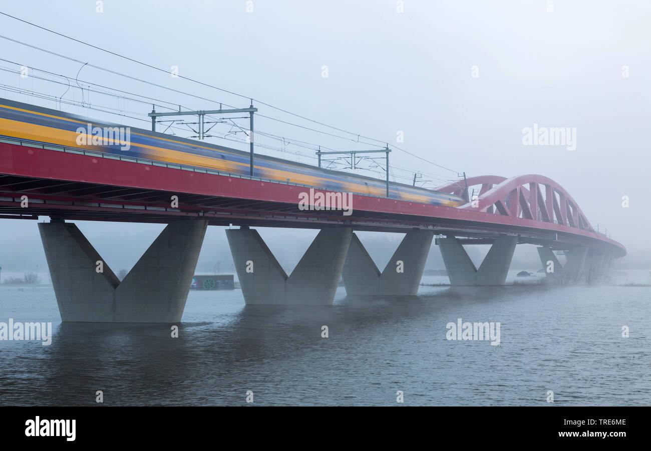 Eisenbahnbruecke ueber die Ijssel bei Flut, Niederlande, Gelderland, Spoorbrug IJssel, Zwolle | IJssel railway bridge at highwater, Netherlands, Gelde - Stock Image