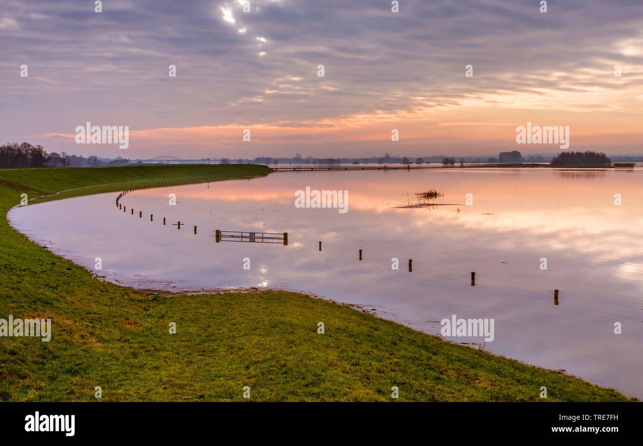 Hochwasser der IJssel, Niederlande, Overijssel, Vreugderijkerwaard, Zwolle | IJssel high water, Netherlands, Overijssel, Vreugderijkerwaard, Zwolle | - Stock Image