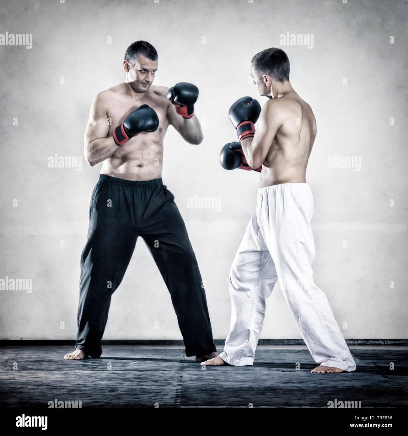 zwei Maenner beim Boxen | two men boxin | BLWS519658.jpg [ (c) blickwinkel/McPHOTO/M. Gann Tel. +49 (0)2302-2793220, E-mail: info@blickwinkel.de, Inte - Stock Image