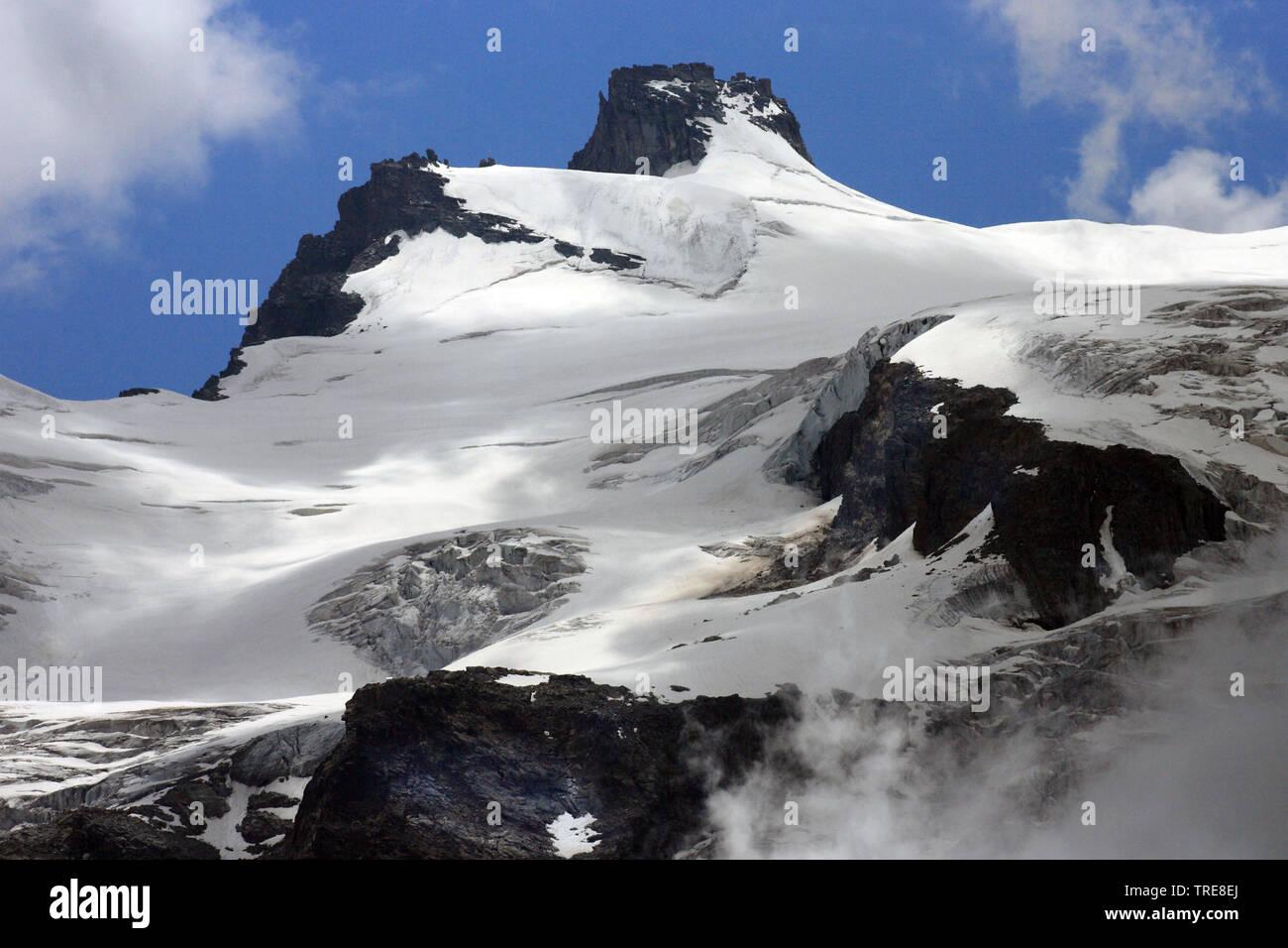 Gran Paradiso, Italien, Gran Paradiso Nationalpark   Gran Paradiso, Italy, Gran Paradiso National Park   BLWS519956.jpg [ (c) blickwinkel/AGAMI/J. van - Stock Image