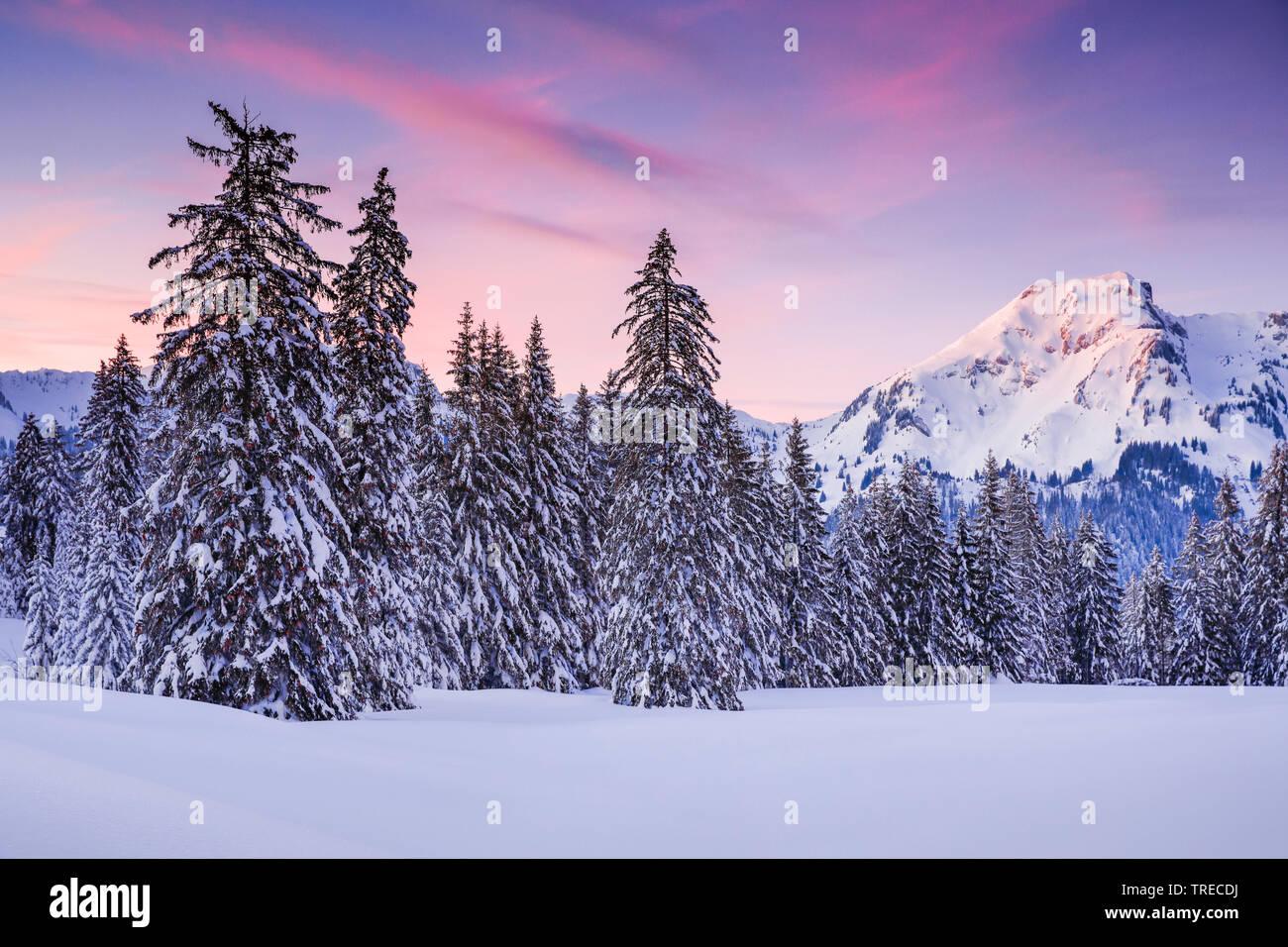 sunset Alp Sellamatt, Switzerland Stock Photo