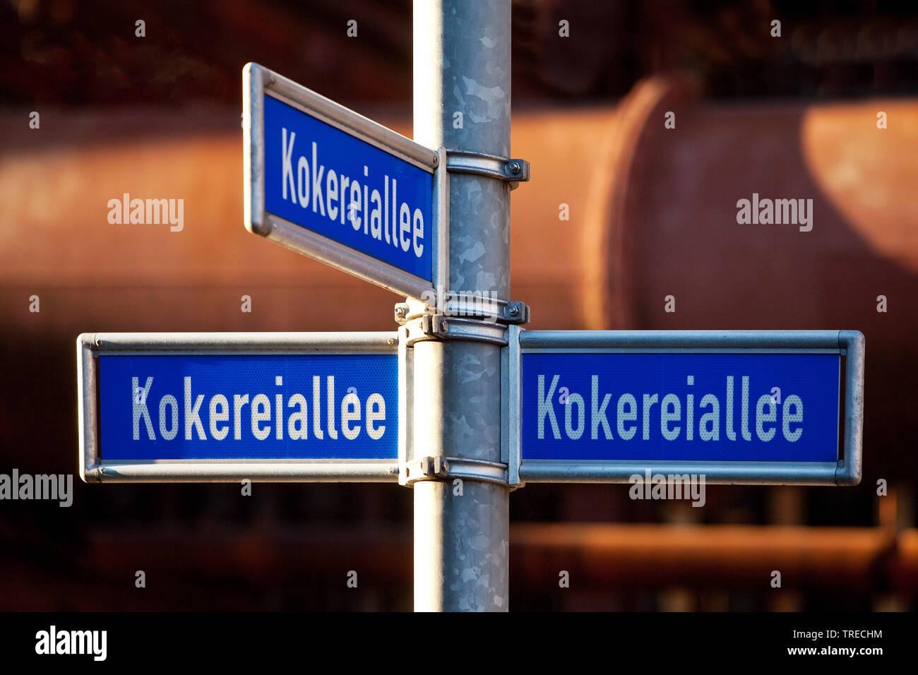Strassenschilder Kokereiallee, Kokerei Zollverein, Deutschland, Nordrhein-Westfalen, Ruhrgebiet, Essen | street name signs Kokereiallee, cooking plant - Stock Image
