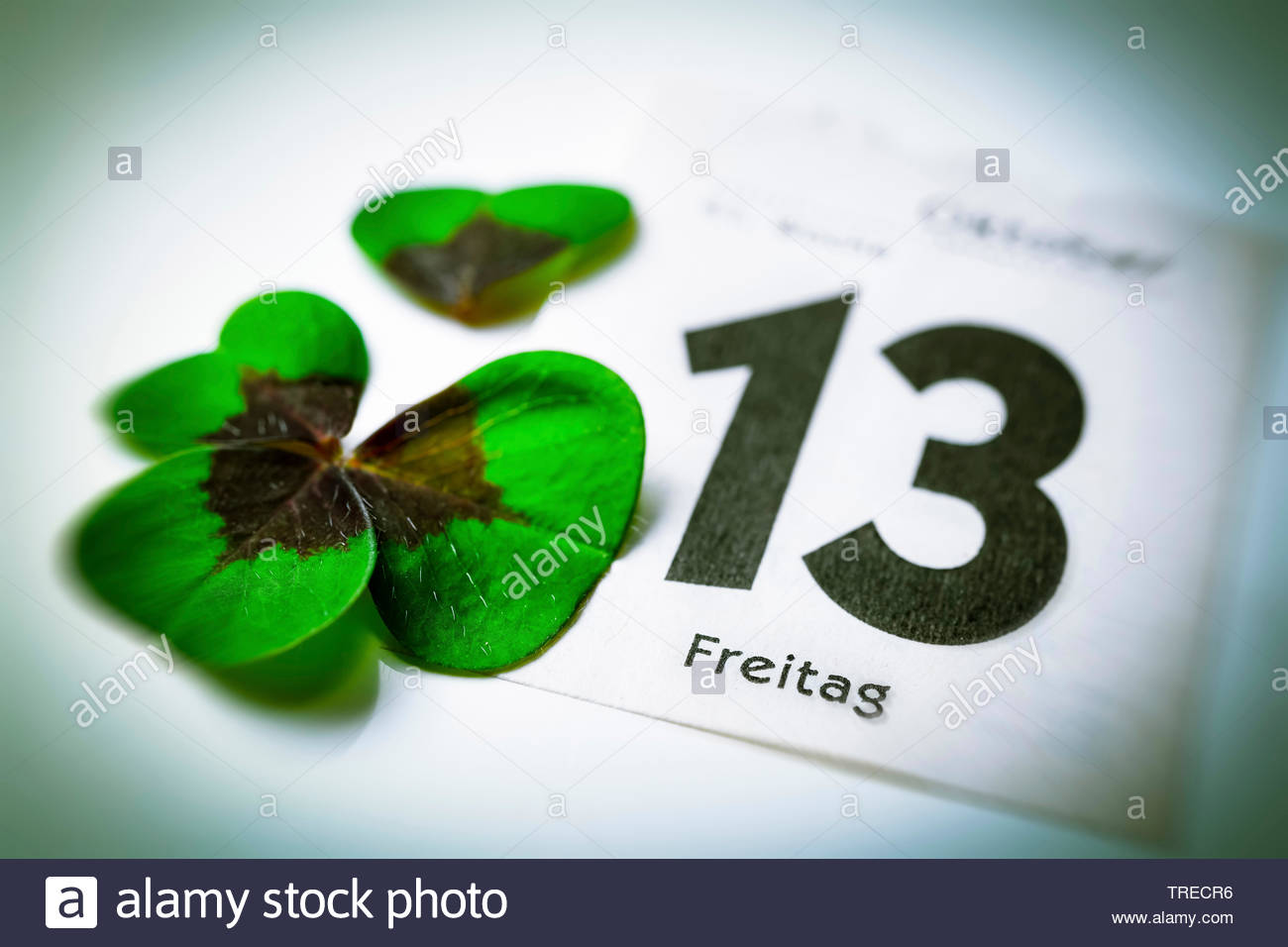 Kalenderblatt Freitag der 13. und zerrissenes Kleeblatt, Deutschland | calender sheet Friday the 13th and broken cloverleaf, Germany | BLWS523135.jpg - Stock Image