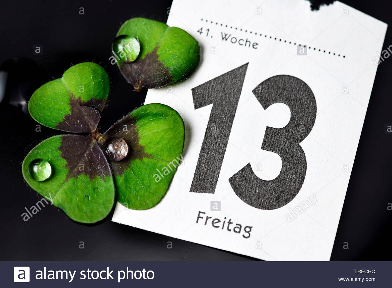 Kalenderblatt Freitag der 13. und zerrissenes Kleeblatt, Deutschland | calender sheet Friday the 13th and broken cloverleaf, Germany | BLWS523136.jpg - Stock Image