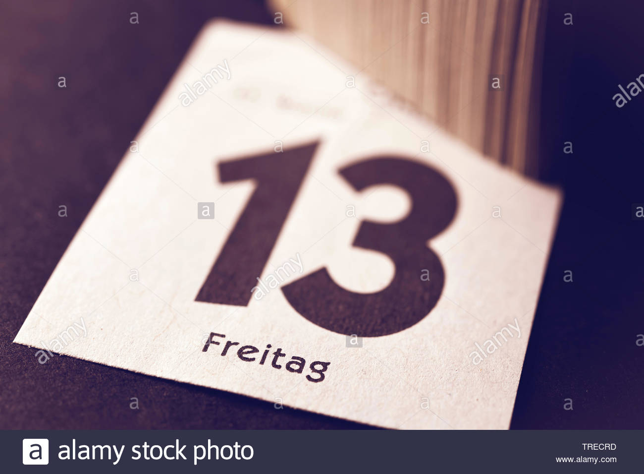 Kalenderblatt Freitag der 13., Deutschland | calender sheet Friday the 13th, Germany | BLWS523134.jpg [ (c) blickwinkel/McPHOTO/C. Ohde Tel. +49 (0)23 - Stock Image