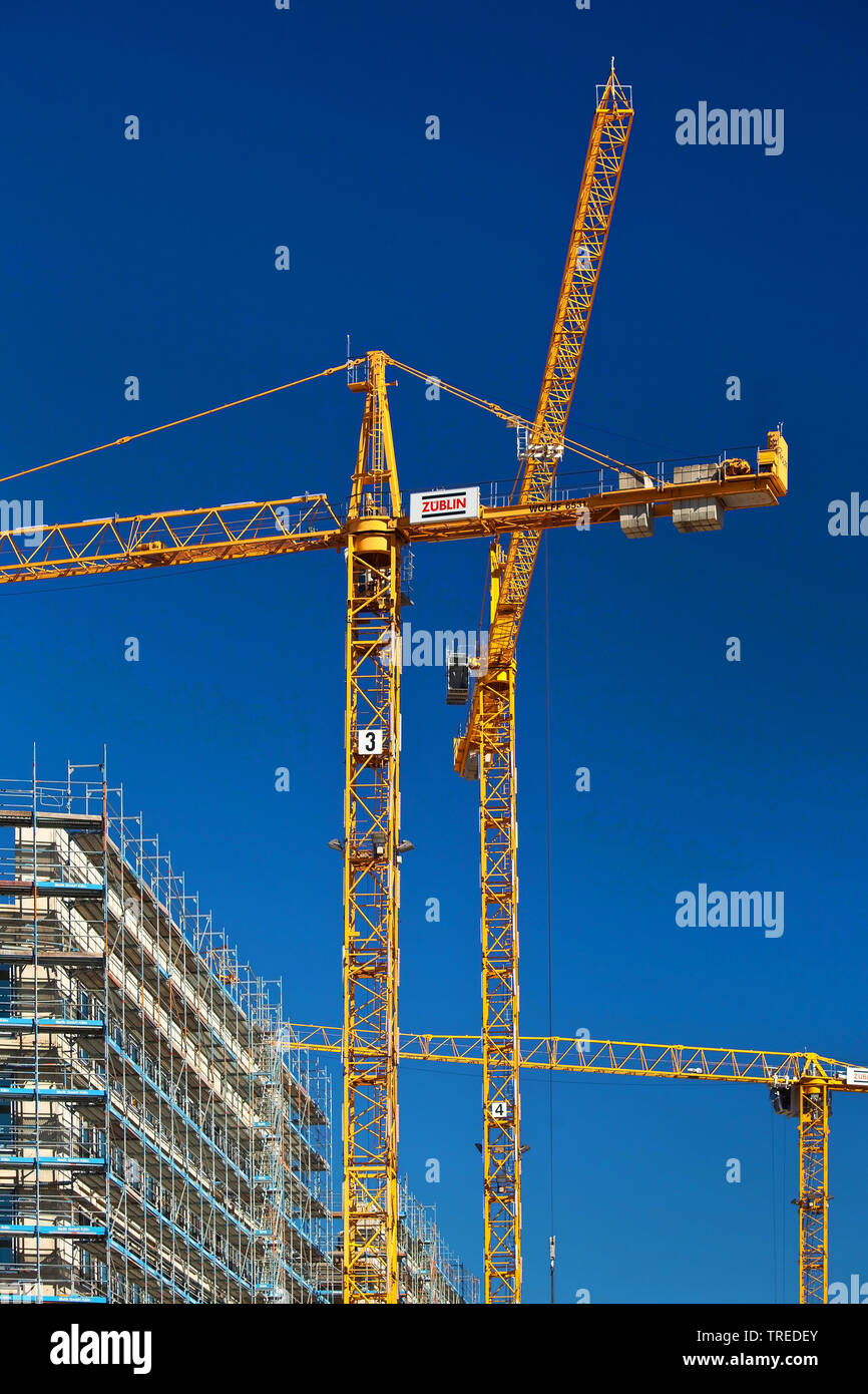 Baukraene auf der Baustelle Messe-City, Deutschland, Nordrhein-Westfalen, Koeln | construction cranes on construction site Messe-City, Germany, North - Stock Image