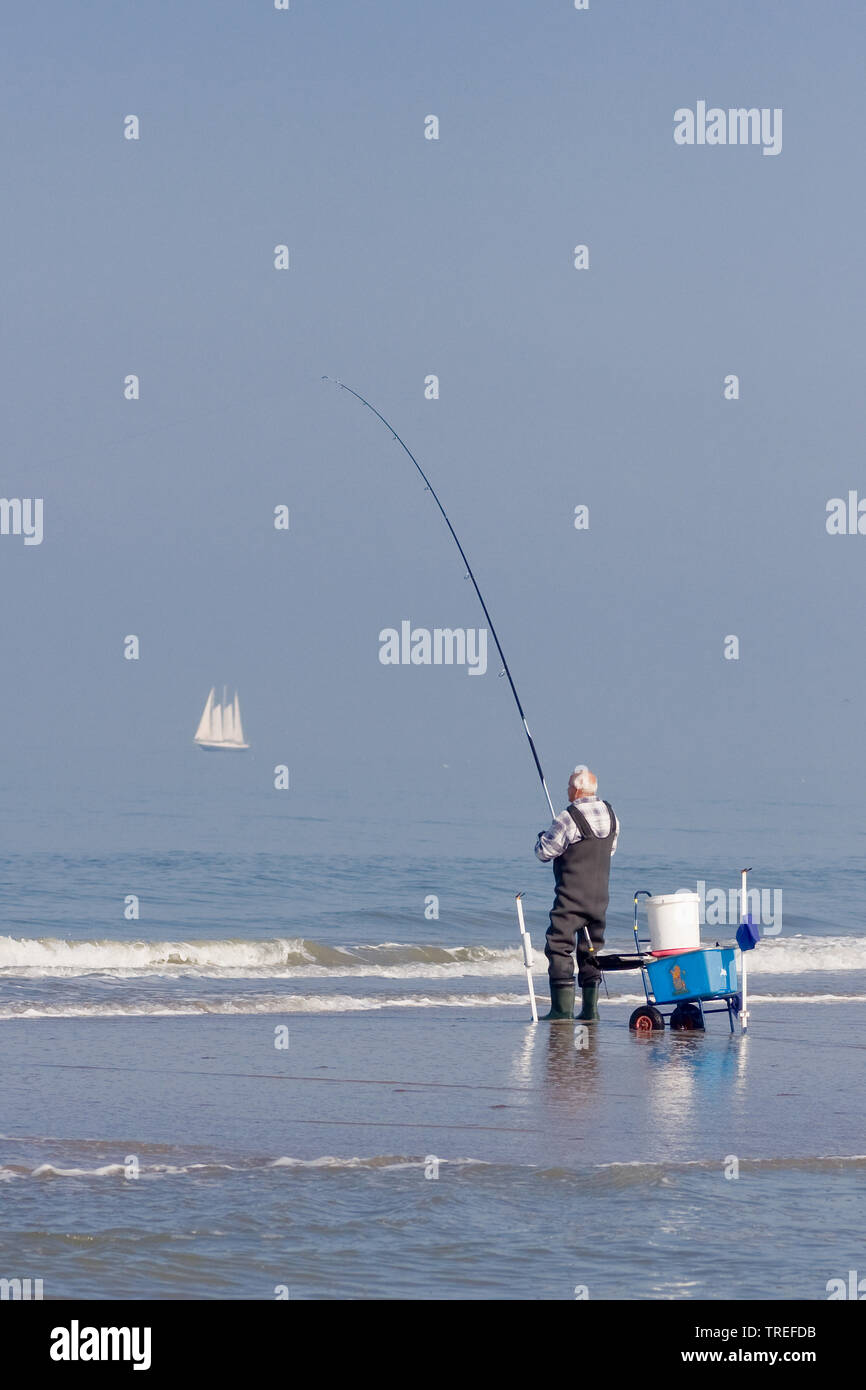 Angler am Strand, Niederlande, Katwijk | Fisherman on beach, Netherlands, Katwijk | BLWS525261.jpg [ (c) blickwinkel/AGAMI/B. Haasnoot Tel. +49 (0)230 - Stock Image
