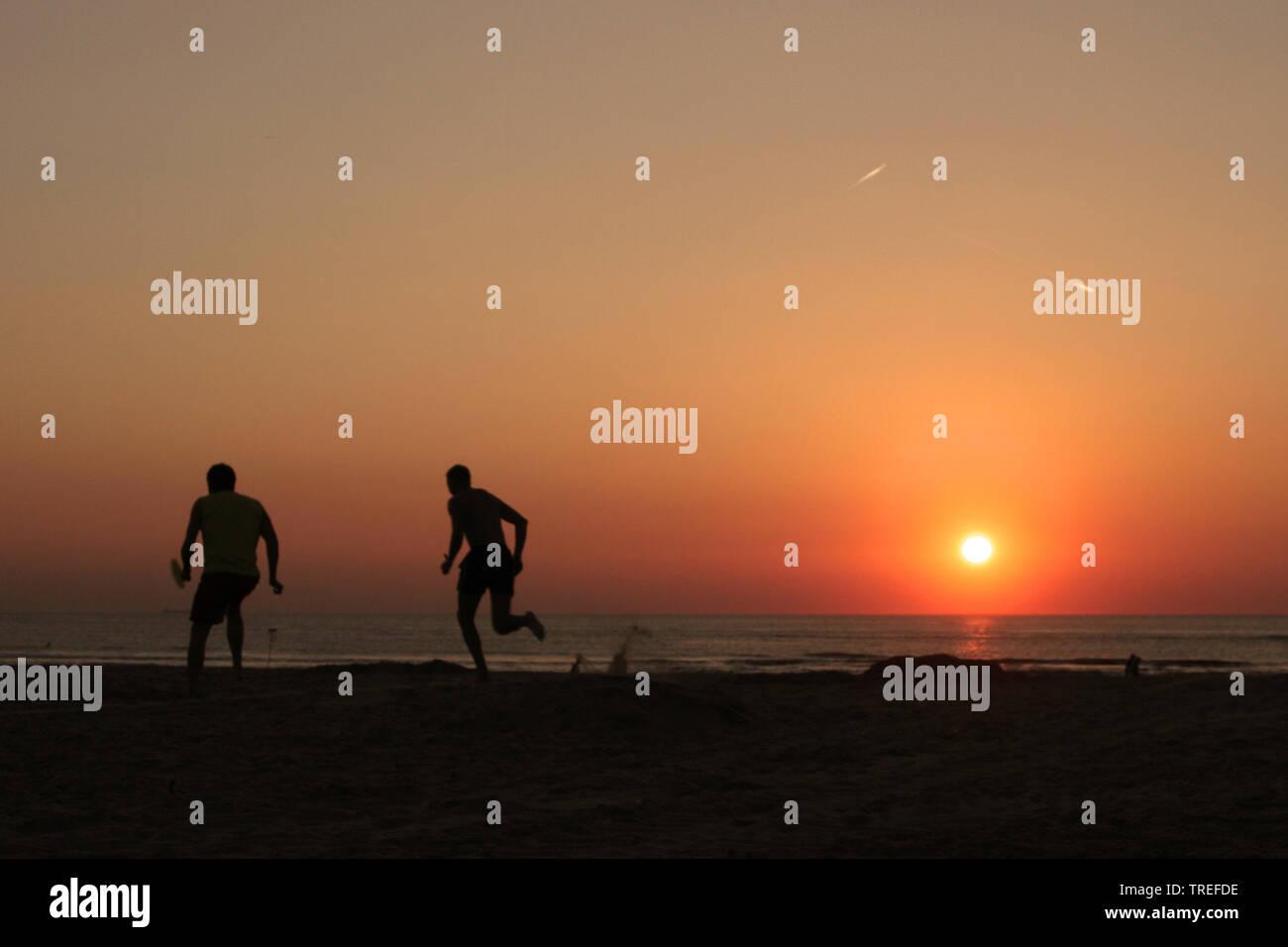 Zwei Sportler am Strand bei Sonnenuntergang, Niederlande, Katwijk   two sportsman on the beach at sunset, Netherlands, Katwijk   BLWS525258.jpg [ (c) - Stock Image