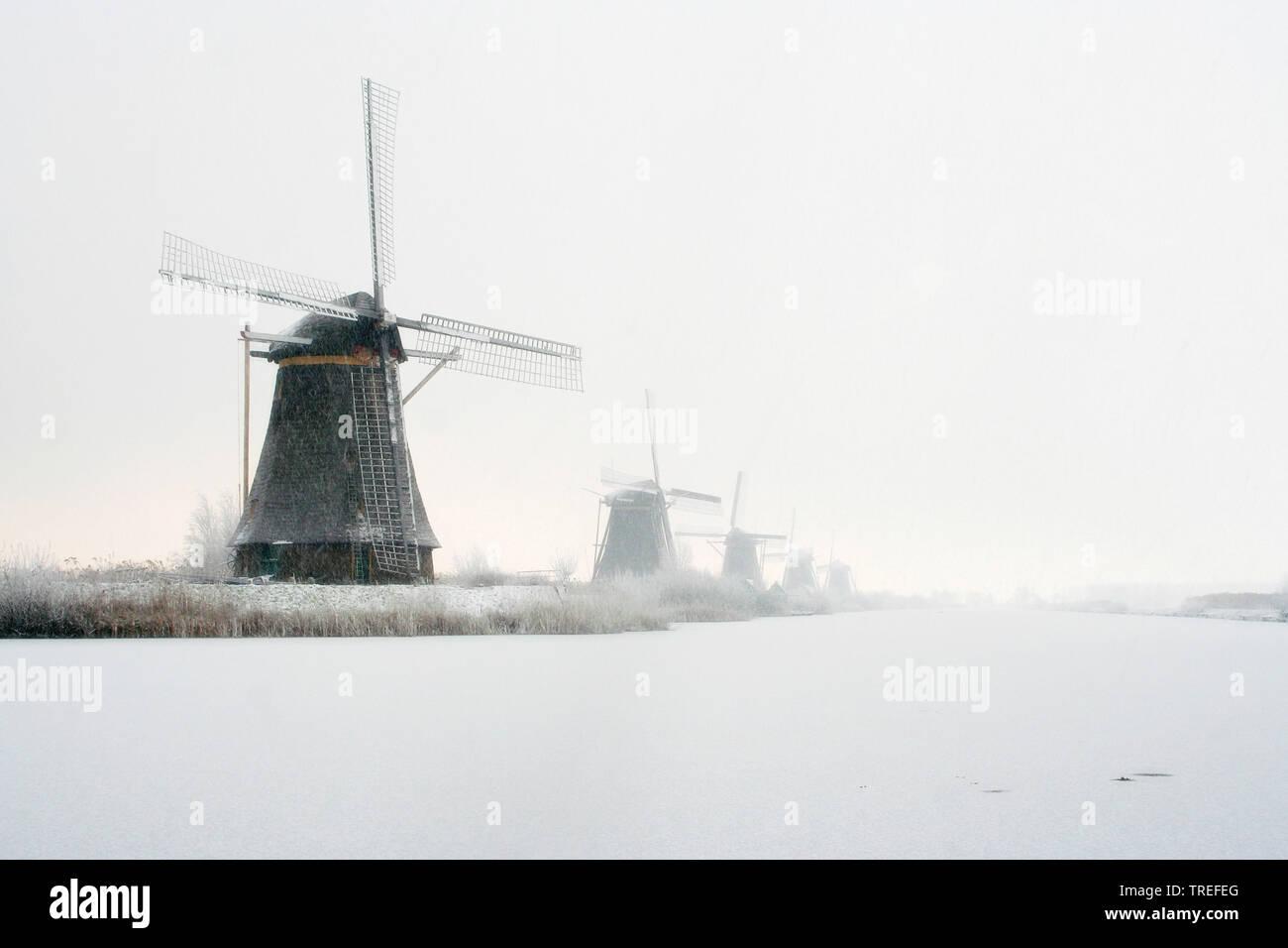 Windmuehlen von Kinderdijk im Winter, Niederlande, Kinderdijk | the windmills of Kinderdijk in winter, Netherlands, Kinderdijk | BLWS525293.jpg [ (c) - Stock Image