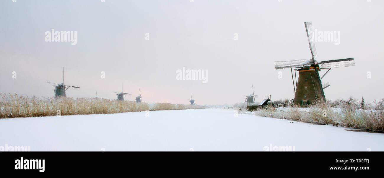 Windmuehlen von Kinderdijk im Winter, Niederlande, Kinderdijk | the windmills of Kinderdijk in winter, Netherlands, Kinderdijk | BLWS525295.jpg [ (c) - Stock Image