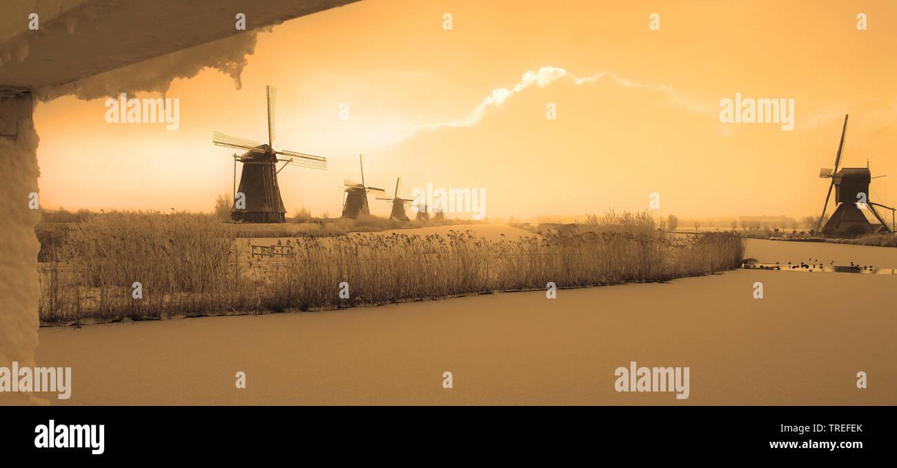 Windmuehlen von Kinderdijk im Winter, Niederlande, Kinderdijk | the windmills of Kinderdijk in winter, Netherlands, Kinderdijk | BLWS525297.jpg [ (c) - Stock Image