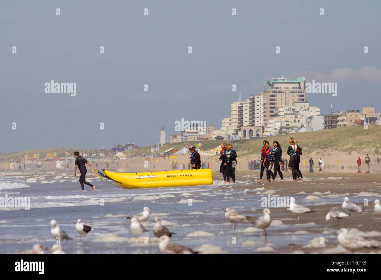 Strand von Katwijk, Niederlande, Katwijk | beach in Katwijk, Netherlands, Katwijk | BLWS525414.jpg [ (c) blickwinkel/AGAMI/A. Meijer Tel. +49 (0)2302- - Stock Image