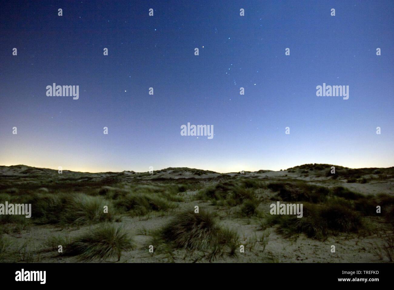 Nachthimmel ueber Duenen, Niederlande, Katwijk    Nightsky above dunes, Netherlands, Katwijk    BLWS525415.jpg [ (c) blickwinkel/AGAMI/A. Meijer Tel. - Stock Image