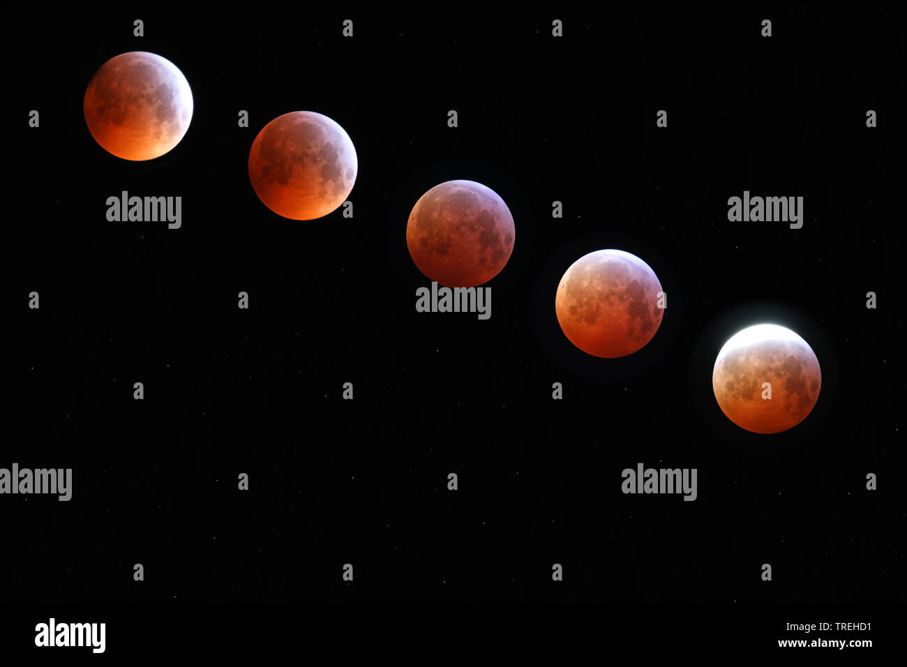 Phasen der Mondfinsternis am 21.01.2019, Deutschland, NRW, Haan   stages of the lunar eclipse of 21.01.2019, Germany, North Rhine-Westphalia, Haan   B - Stock Image