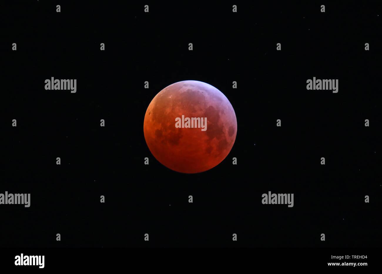 Mondfinsternis am 21.01.2019, Deutschland, NRW, Haan   lunar eclipse of 21.01.2019, Germany, North Rhine-Westphalia, Haan   BLWS526785.jpg [ (c) blick - Stock Image