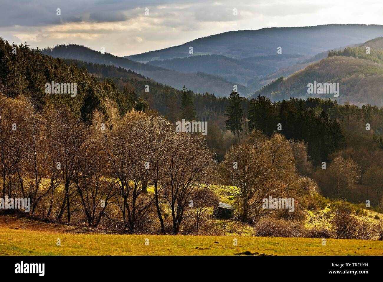 Landschaft am Wanderweg Sauerland-Hoehenflug, Deutschland, Nordrhein-Westfalen, Sauerland, Plettenberg | view from hiking path Sauerland-Hoehenlflug t - Stock Image